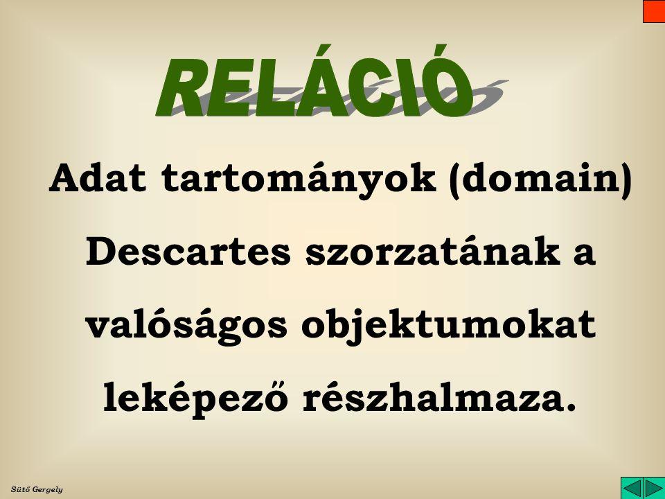 RELÁCIÓ Adat tartományok (domain) Descartes szorzatának a valóságos objektumokat leképező részhalmaza.