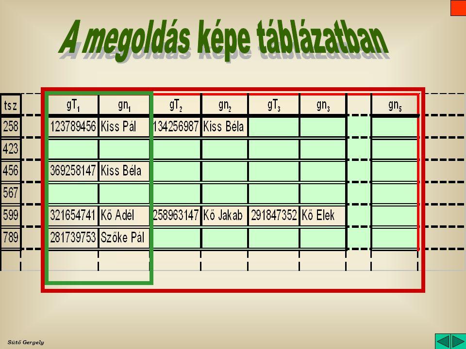 A megoldás képe táblázatban