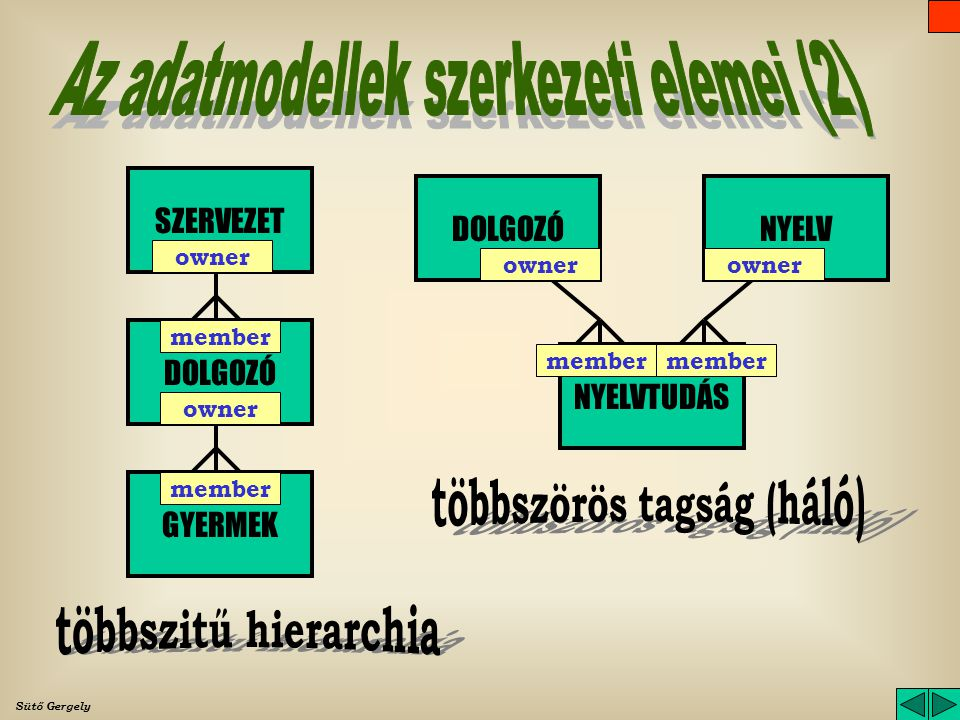 többszörös tagság (háló)