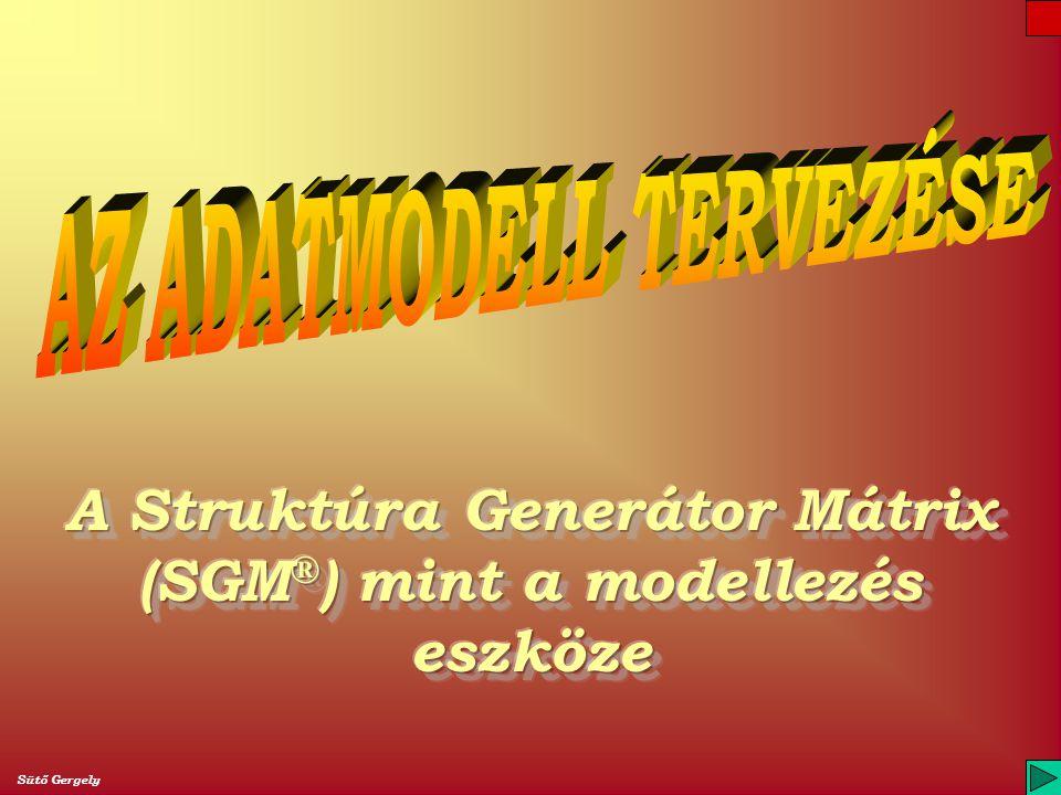 A Struktúra Generátor Mátrix (SGM®) mint a modellezés eszköze