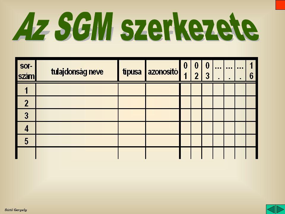 Az SGM szerkezete Sütő Gergely