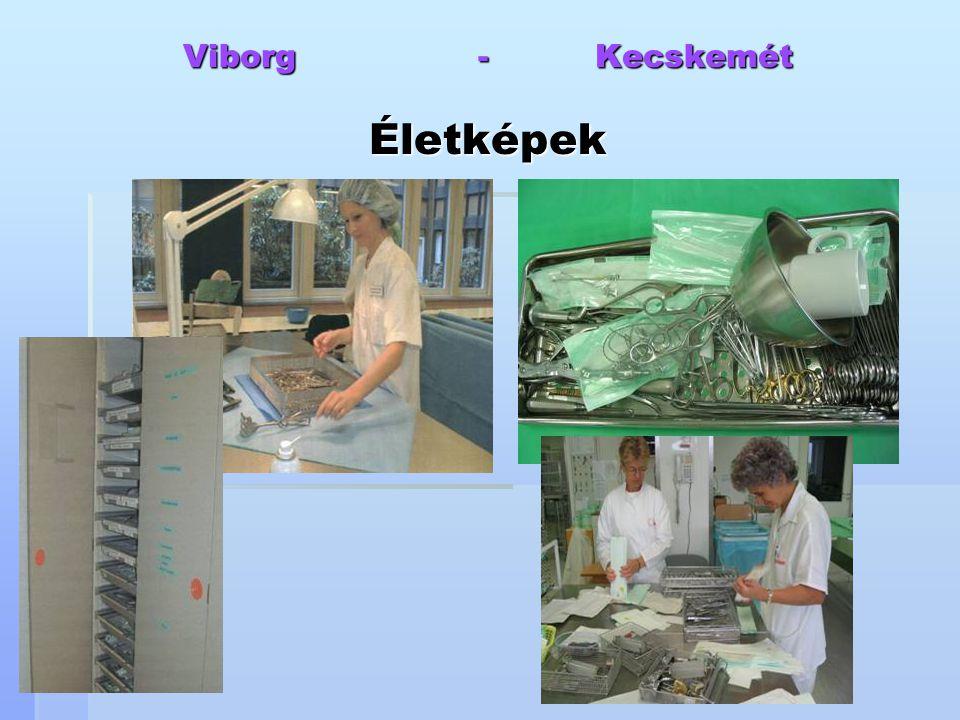 Viborg - Kecskemét Életképek