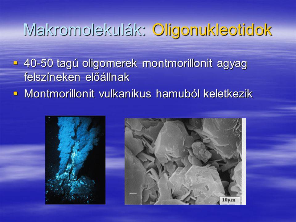 Makromolekulák: Oligonukleotidok