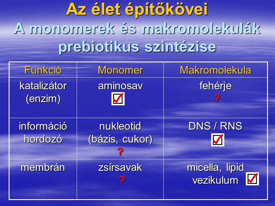Az élet építőkövei A monomerek és makromolekulák prebiotikus szintézise