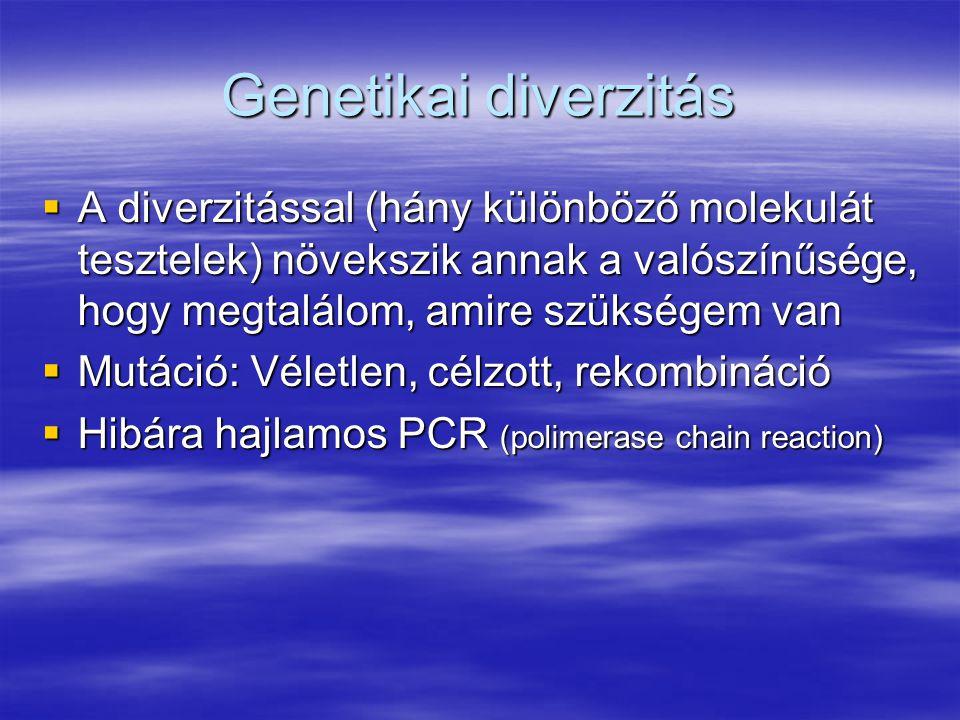 Genetikai diverzitás A diverzitással (hány különböző molekulát tesztelek) növekszik annak a valószínűsége, hogy megtalálom, amire szükségem van.