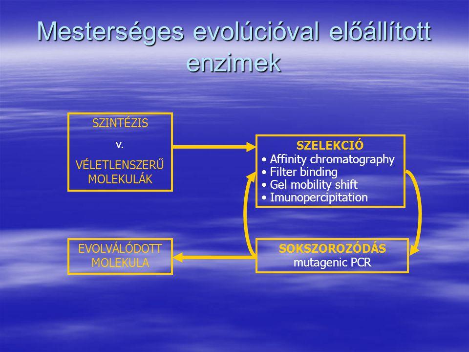 Mesterséges evolúcióval előállított enzimek