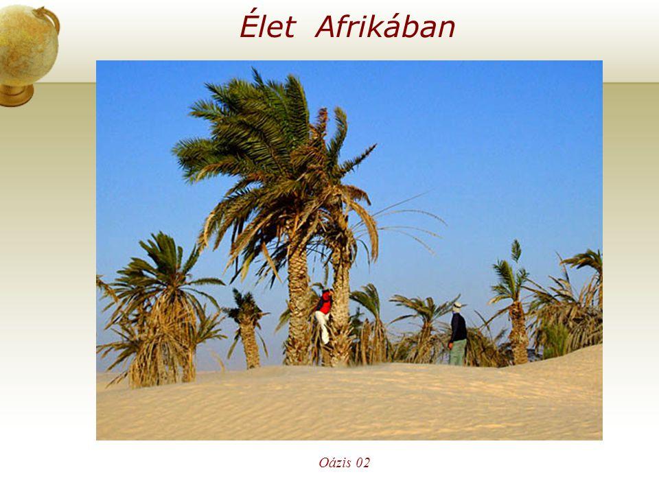 Élet Afrikában Illesszen be egy térképet az országról. Oázis 02
