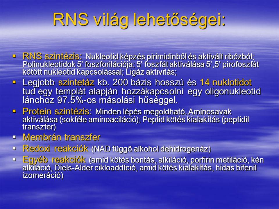 RNS világ lehetőségei: