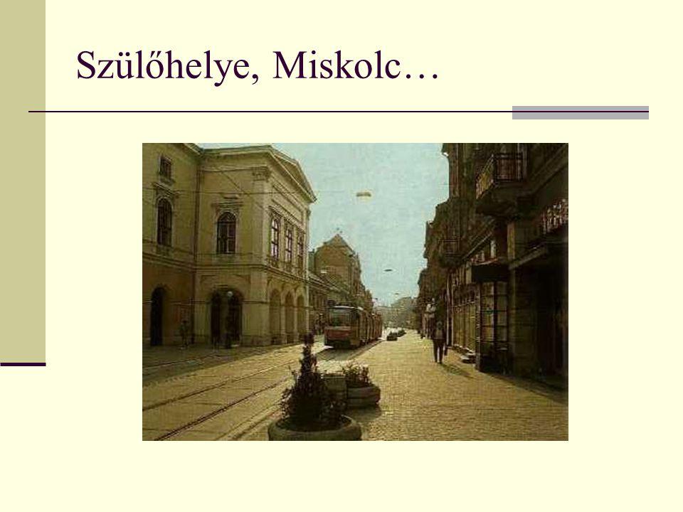 Szülőhelye, Miskolc…