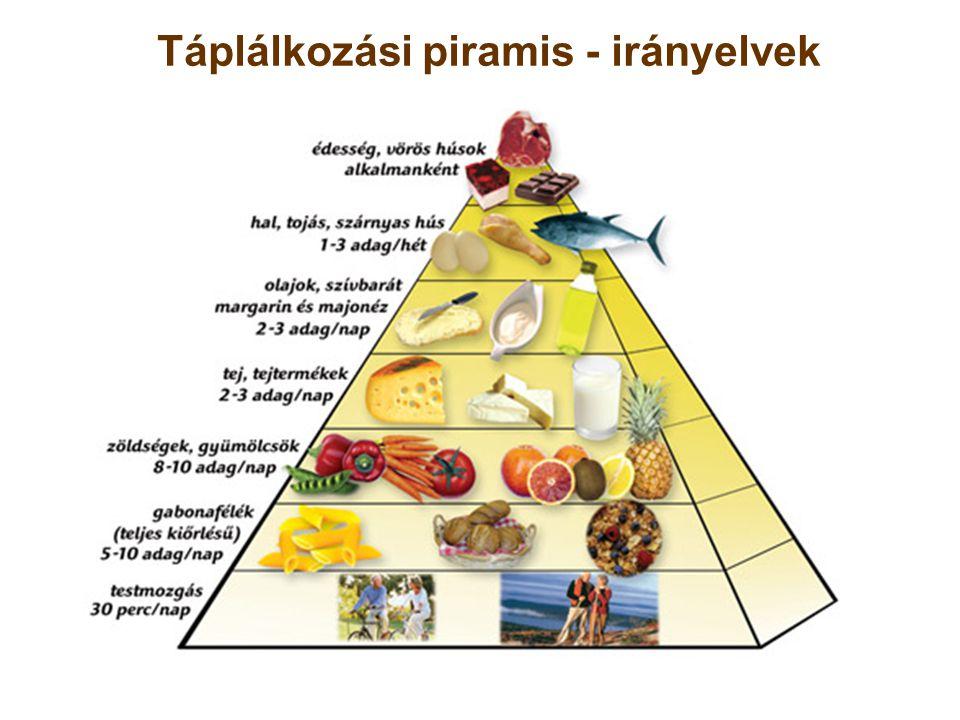 Táplálkozási piramis - irányelvek