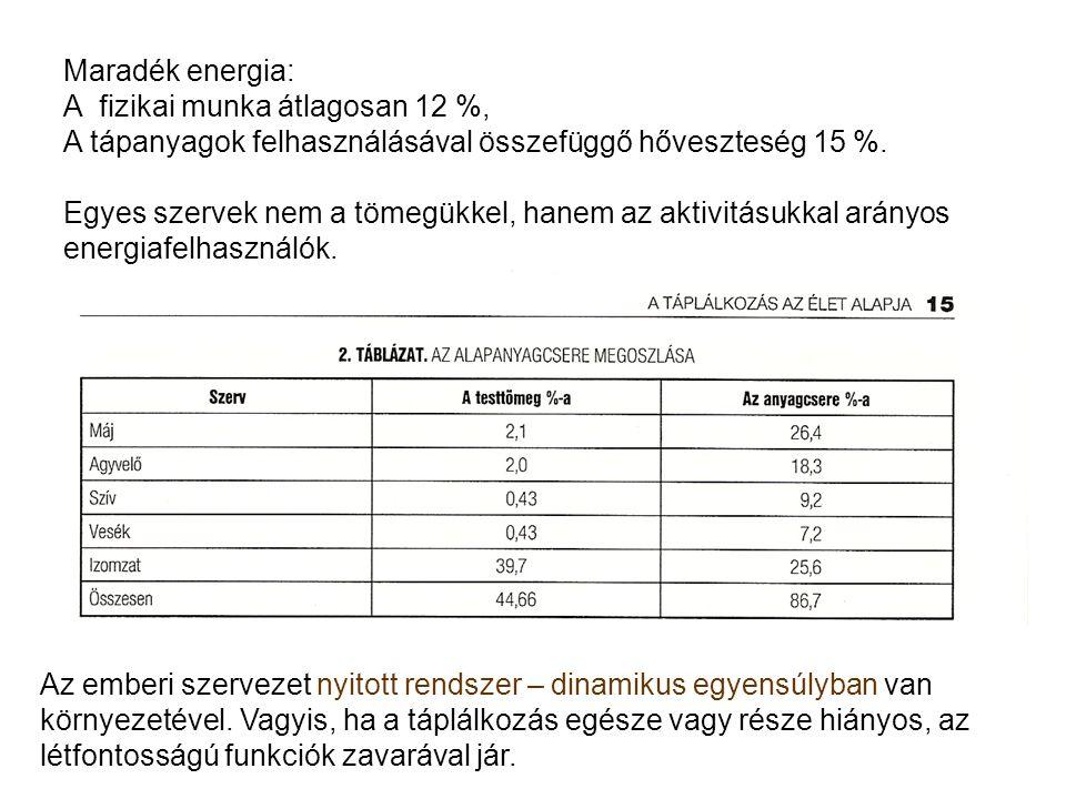 Maradék energia: A fizikai munka átlagosan 12 %, A tápanyagok felhasználásával összefüggő hőveszteség 15 %.