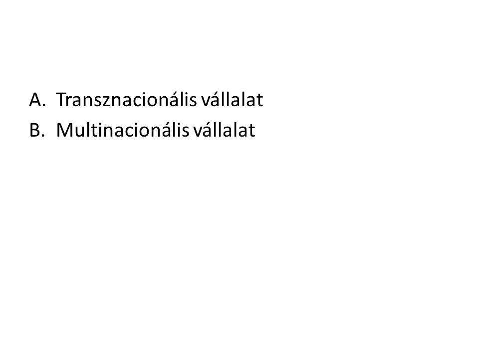 Transznacionális vállalat