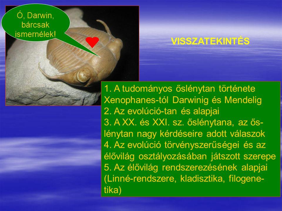 1. A tudományos őslénytan története
