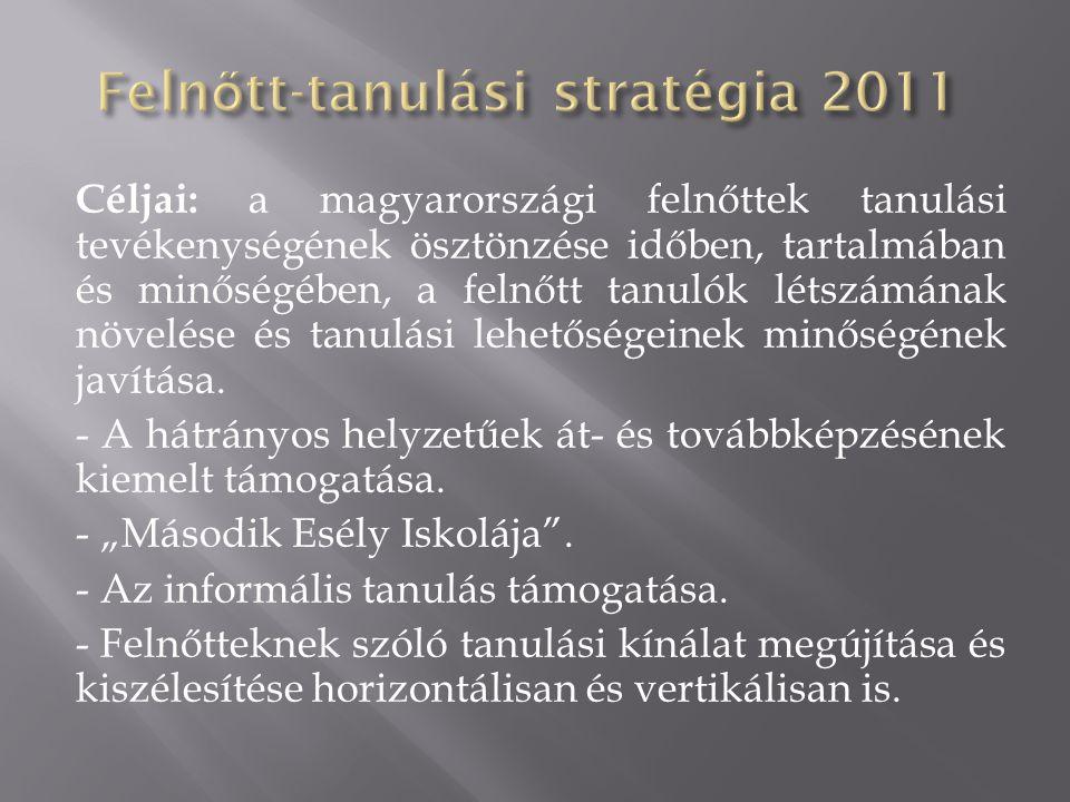 Felnőtt-tanulási stratégia 2011
