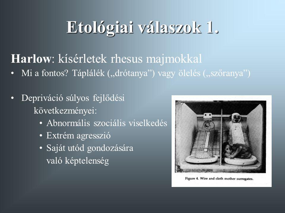 Etológiai válaszok 1. Harlow: kísérletek rhesus majmokkal