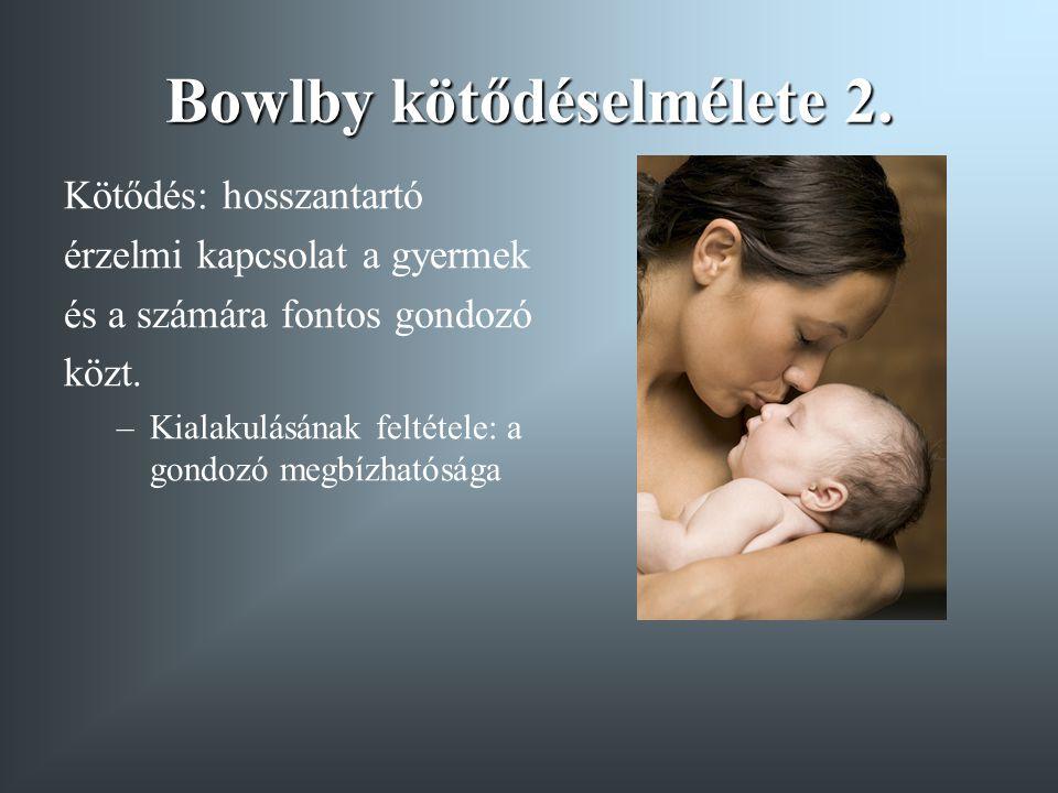 Bowlby kötődéselmélete 2.