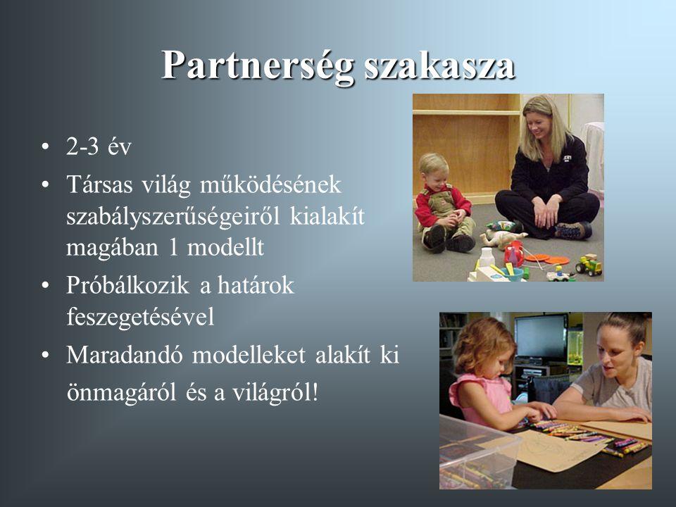 Partnerség szakasza 2-3 év