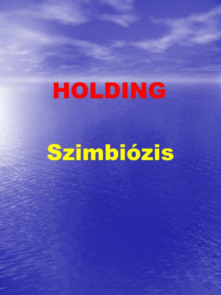 cze 2017.04.04. HOLDING Szimbiózis