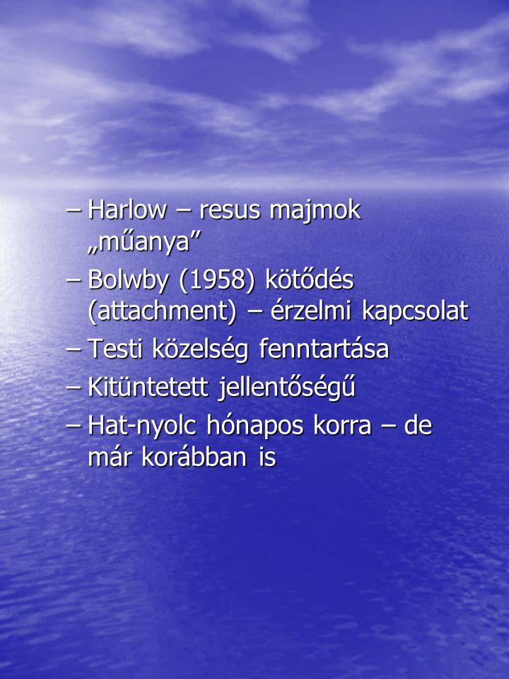 """Harlow – resus majmok """"műanya"""
