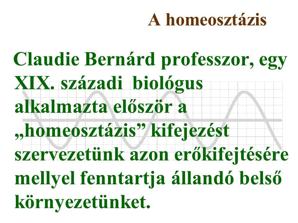 A homeosztázis