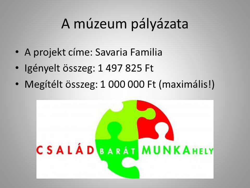A múzeum pályázata A projekt címe: Savaria Familia