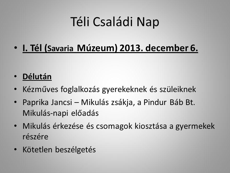 Téli Családi Nap I. Tél (Savaria Múzeum) 2013. december 6. Délután