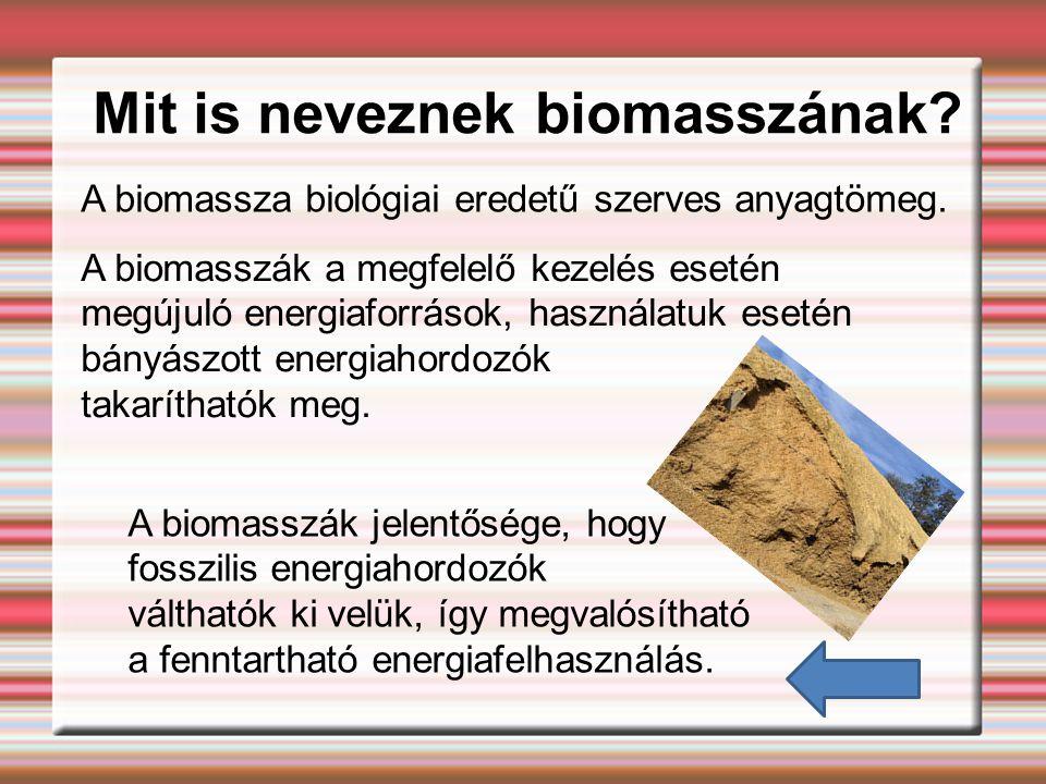 Mit is neveznek biomasszának