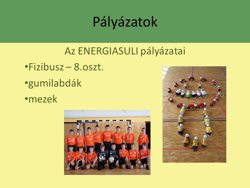 Az ENERGIASULI pályázatai