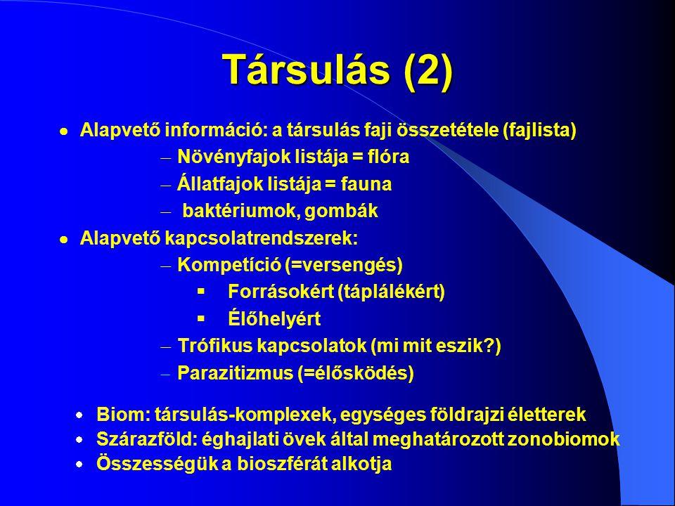 Társulás (2)  Alapvető információ: a társulás faji összetétele (fajlista)  Növényfajok listája = flóra.