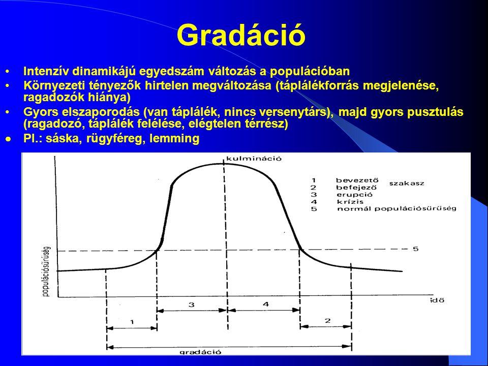 Gradáció Intenzív dinamikájú egyedszám változás a populációban