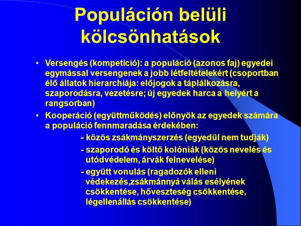 Populáción belüli kölcsönhatások