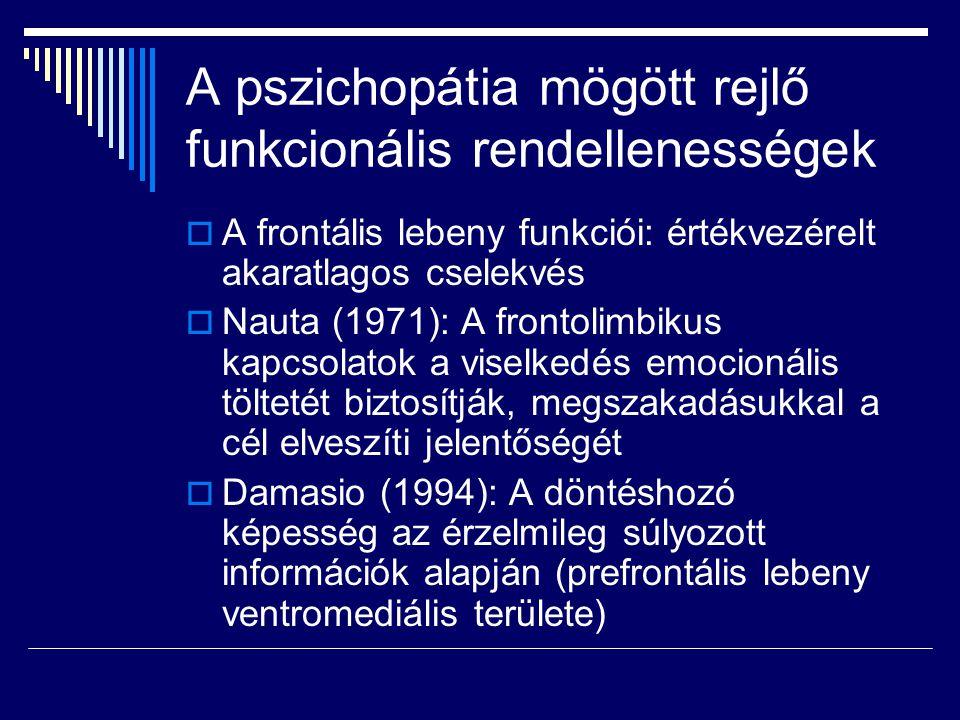 A pszichopátia mögött rejlő funkcionális rendellenességek