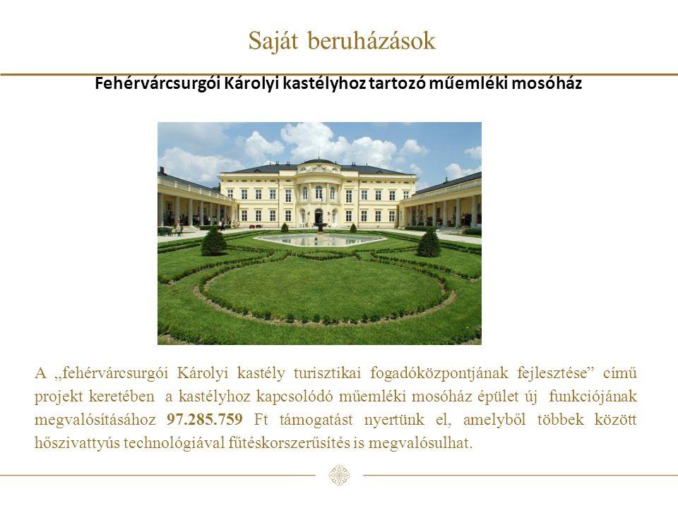 Fehérvárcsurgói Károlyi kastélyhoz tartozó műemléki mosóház