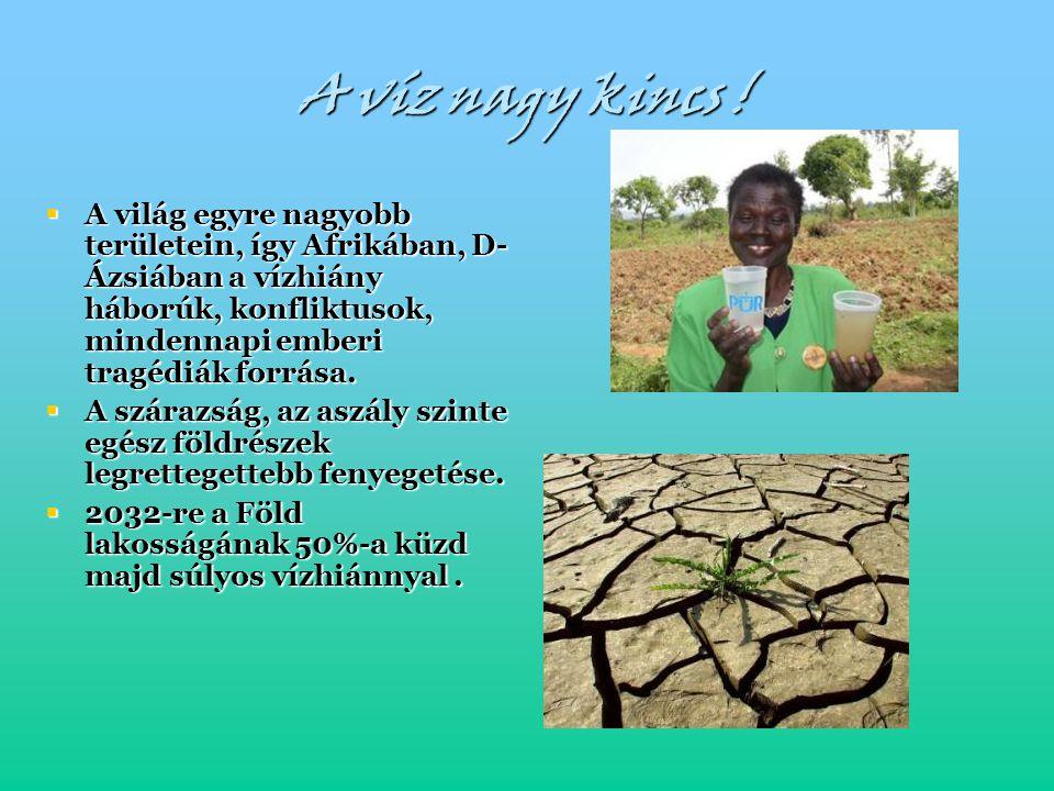 A víz nagy kincs ! A világ egyre nagyobb területein, így Afrikában, D-Ázsiában a vízhiány háborúk, konfliktusok, mindennapi emberi tragédiák forrása.