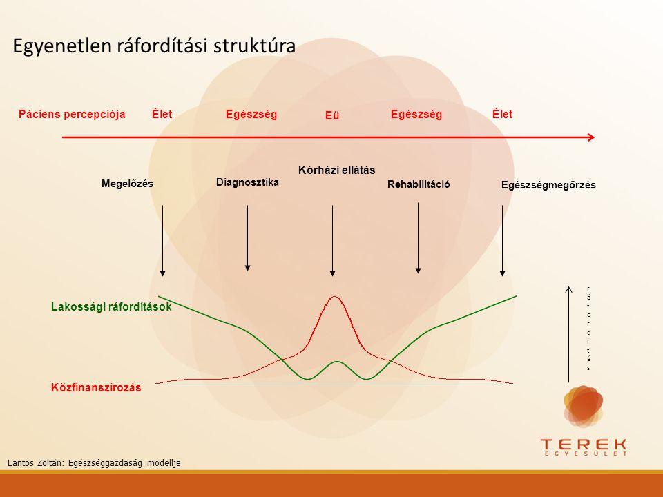 Egyenetlen ráfordítási struktúra