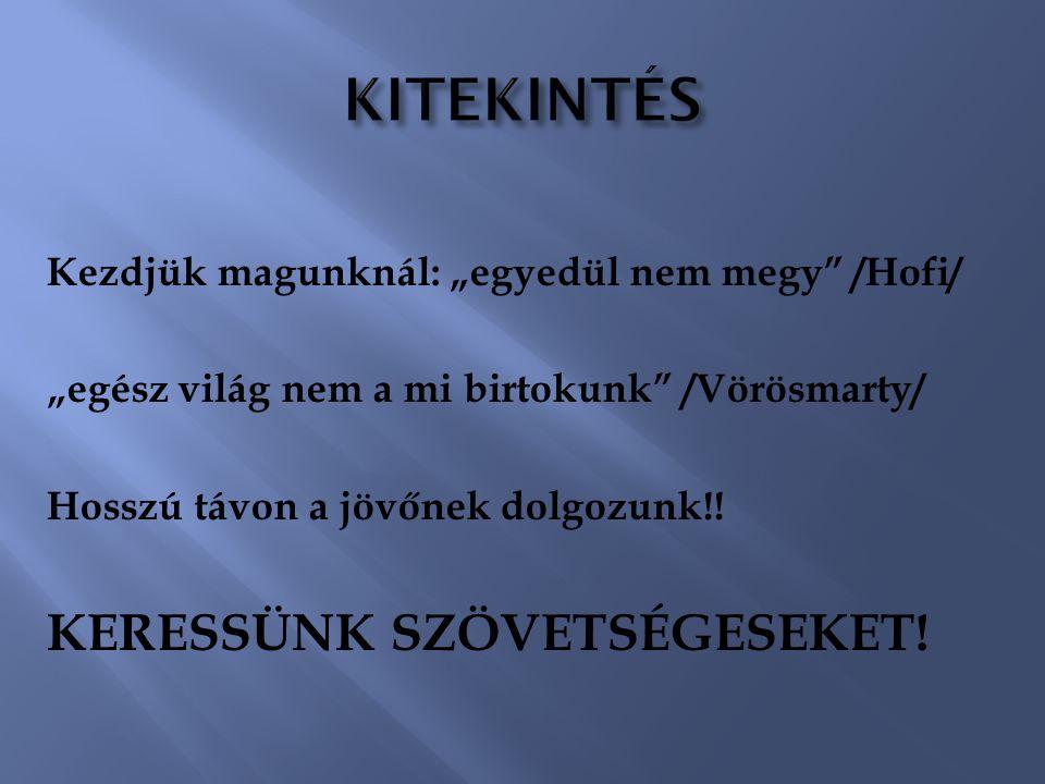 KITEKINTÉS KERESSÜNK SZÖVETSÉGESEKET!
