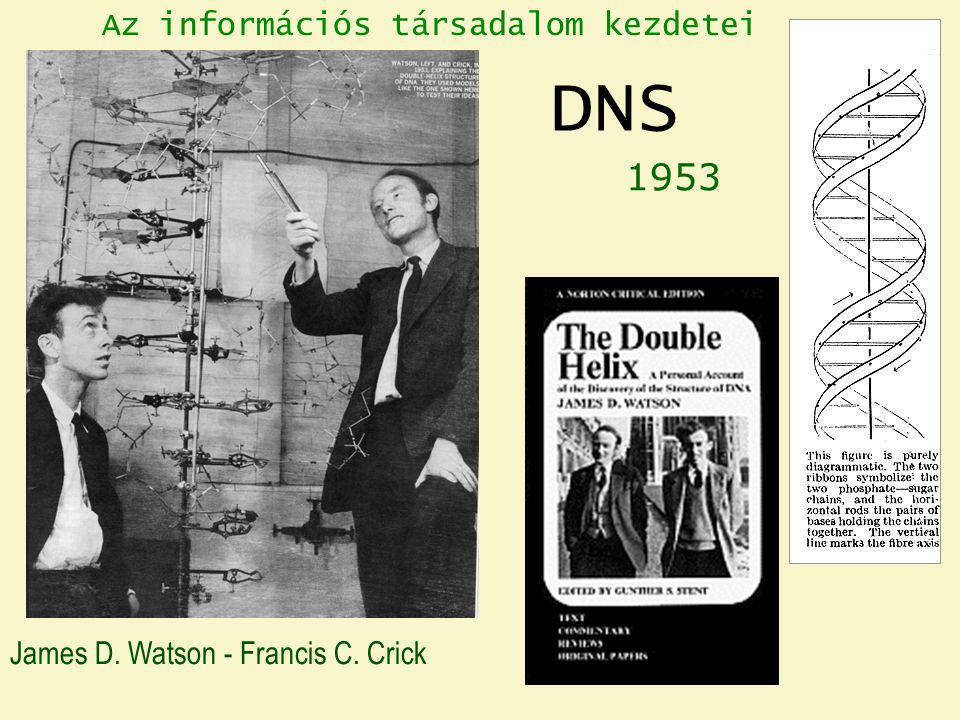 DNS 1953 Az információs társadalom kezdetei