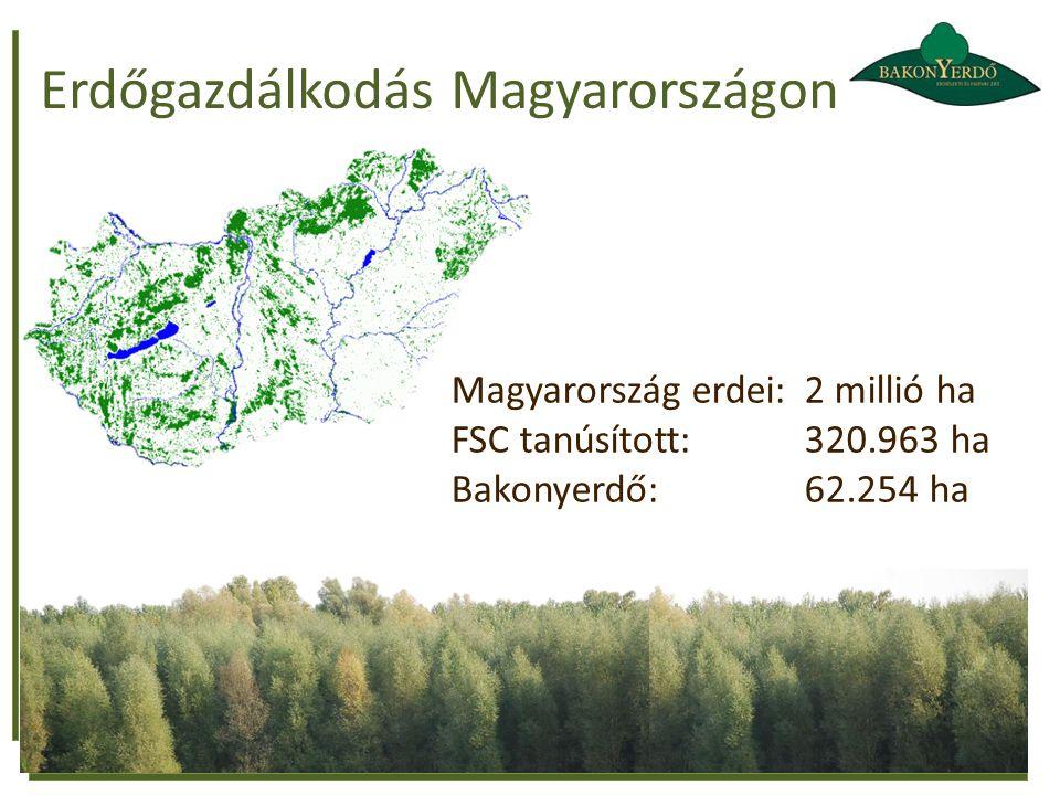 Erdőgazdálkodás Magyarországon
