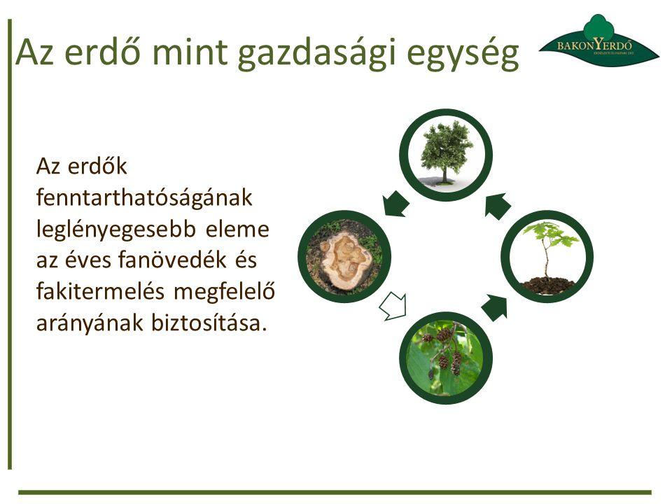 Az erdő mint gazdasági egység