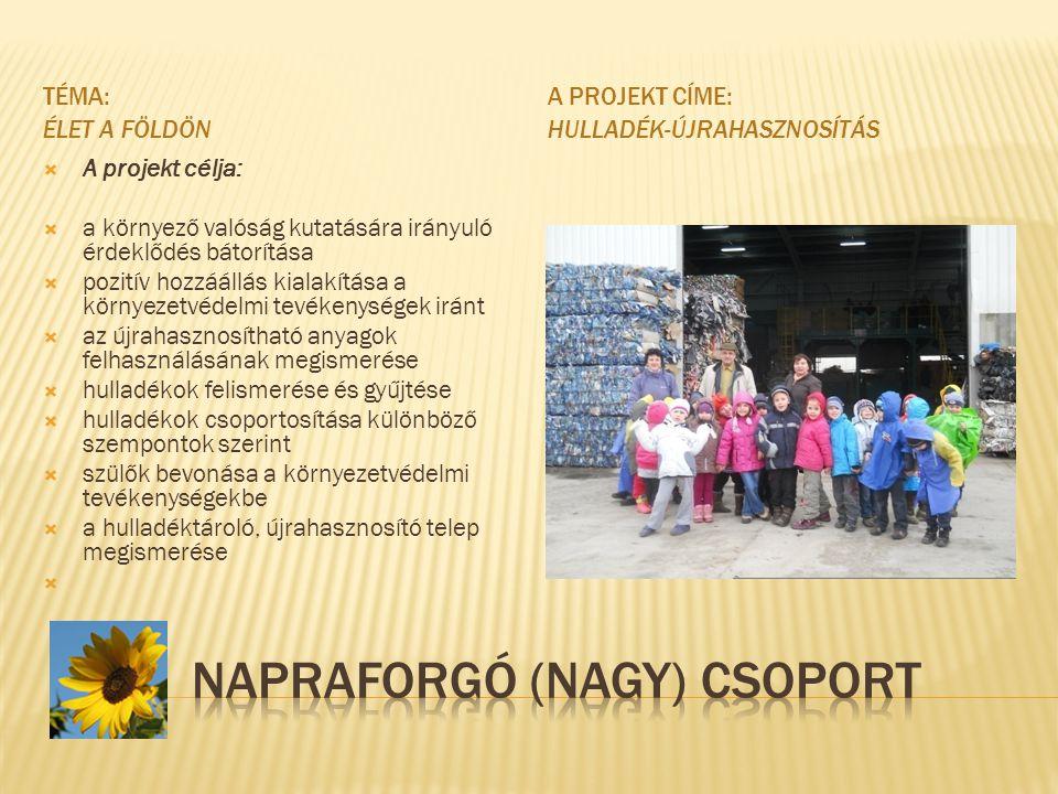 NAPRAFORGÓ (NAGY) CSOPORT