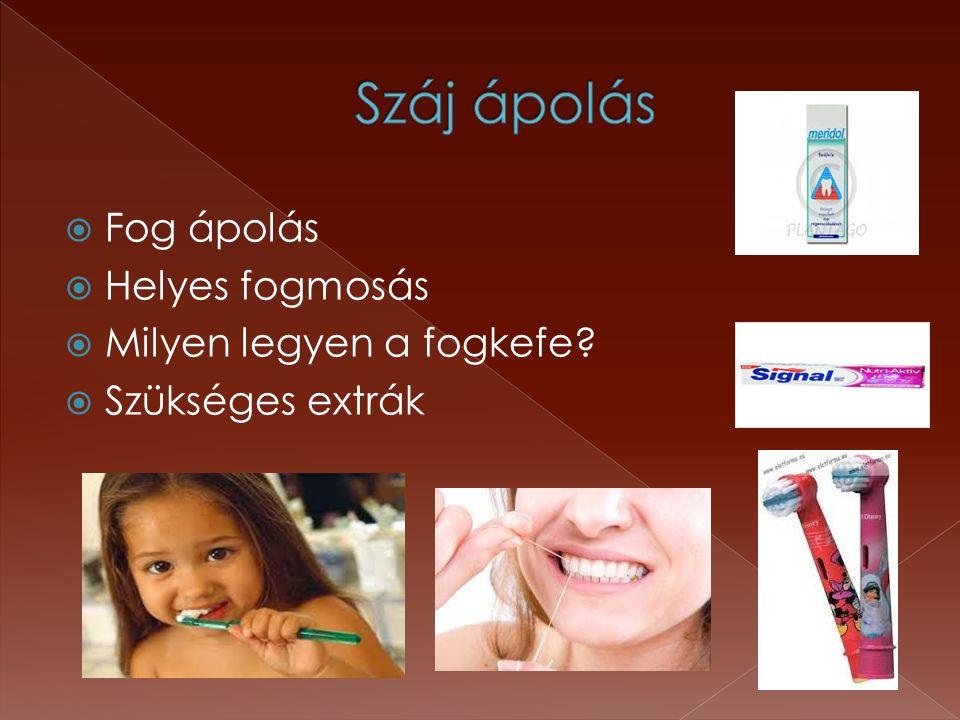 Száj ápolás Fog ápolás Helyes fogmosás Milyen legyen a fogkefe
