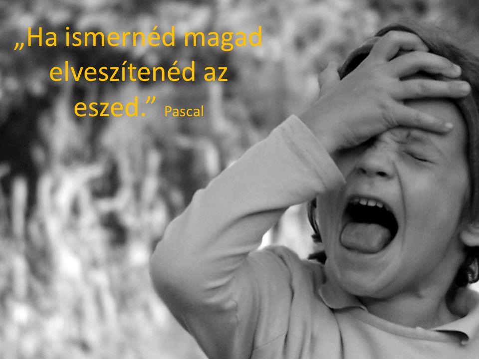 """""""Ha ismernéd magad elveszítenéd az eszed. Pascal"""