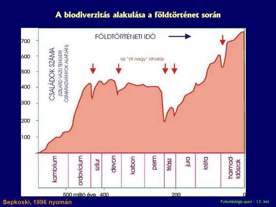 A biodiverzitás alakulása a földtörténet során
