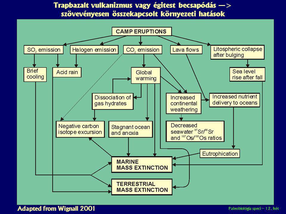 Trapbazalt vulkanizmus vagy égitest becsapódás —> szövevényesen összekapcsolt környezeti hatások