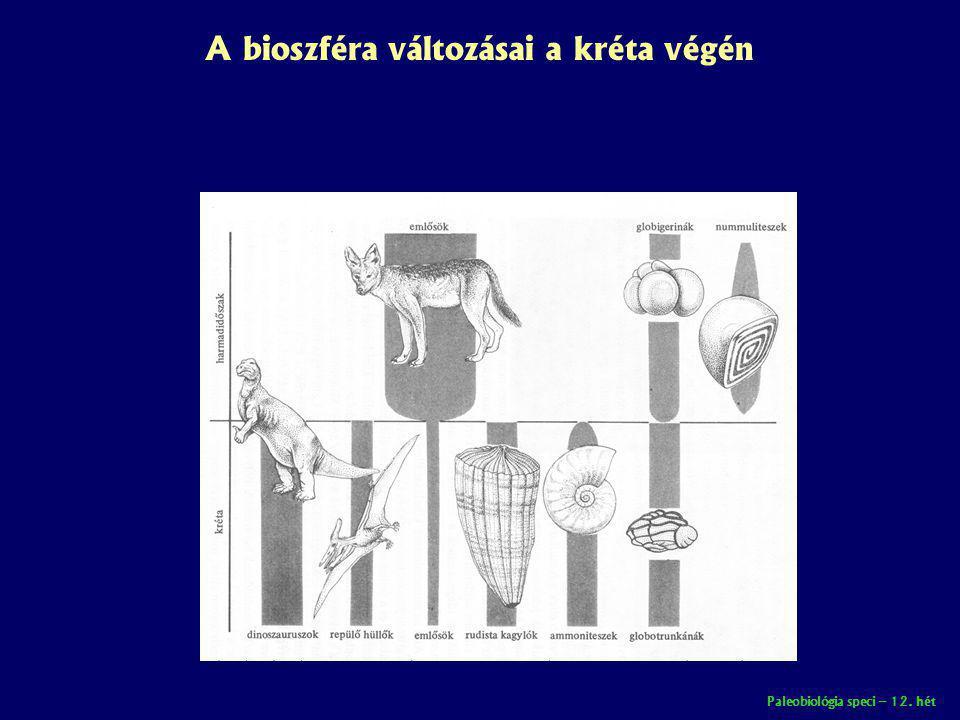 A bioszféra változásai a kréta végén
