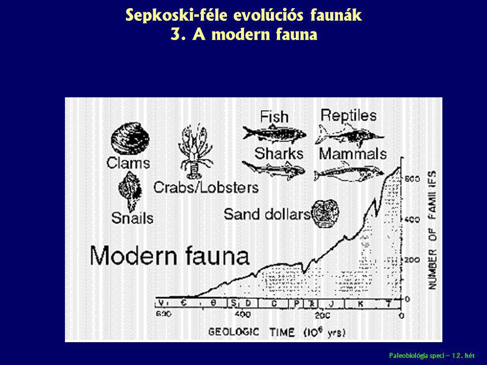 Sepkoski-féle evolúciós faunák 3. A modern fauna