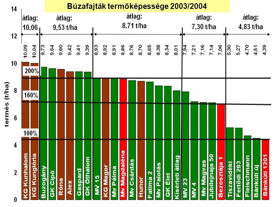 Búzafajták termőképessége 2003/2004