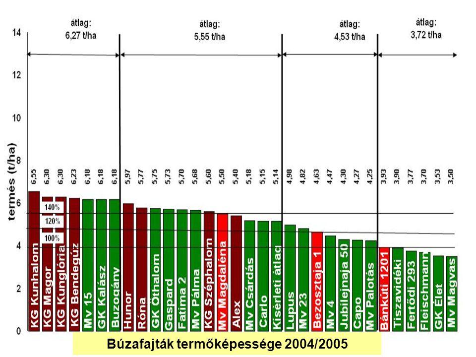 Búzafajták termőképessége 2004/2005