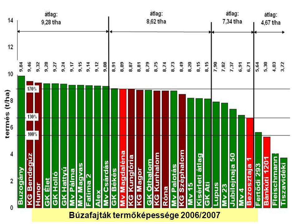 Búzafajták termőképessége 2006/2007