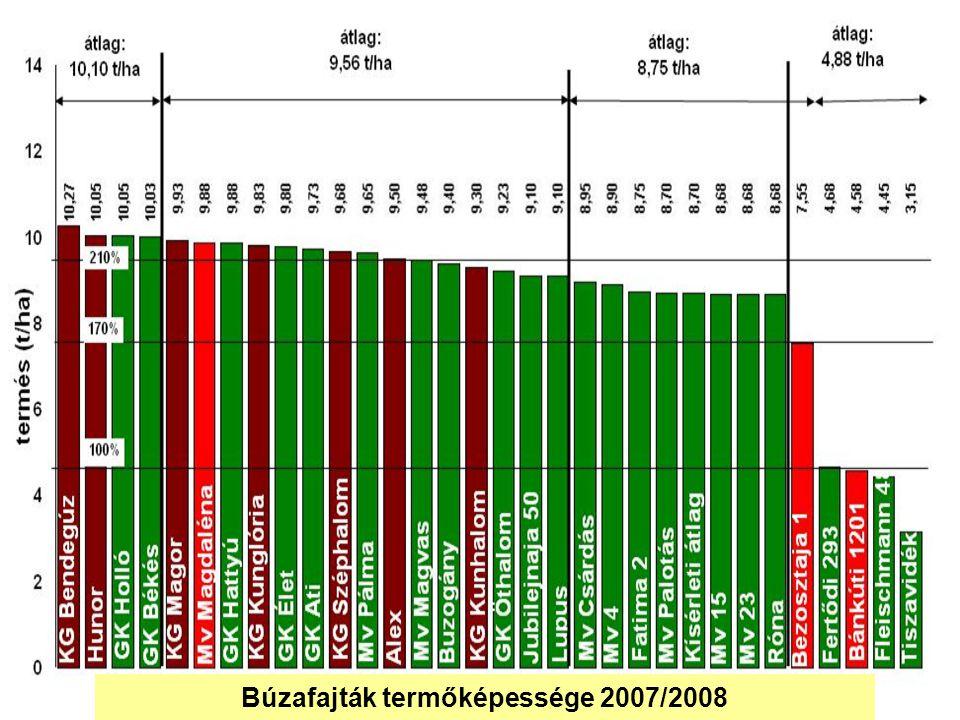 Búzafajták termőképessége 2007/2008